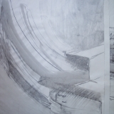 stem, charcole drawing, 30x42 inches 007